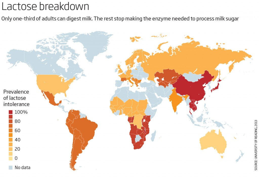 Map presenting lactose intolerance globally