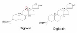 digoxinstructure
