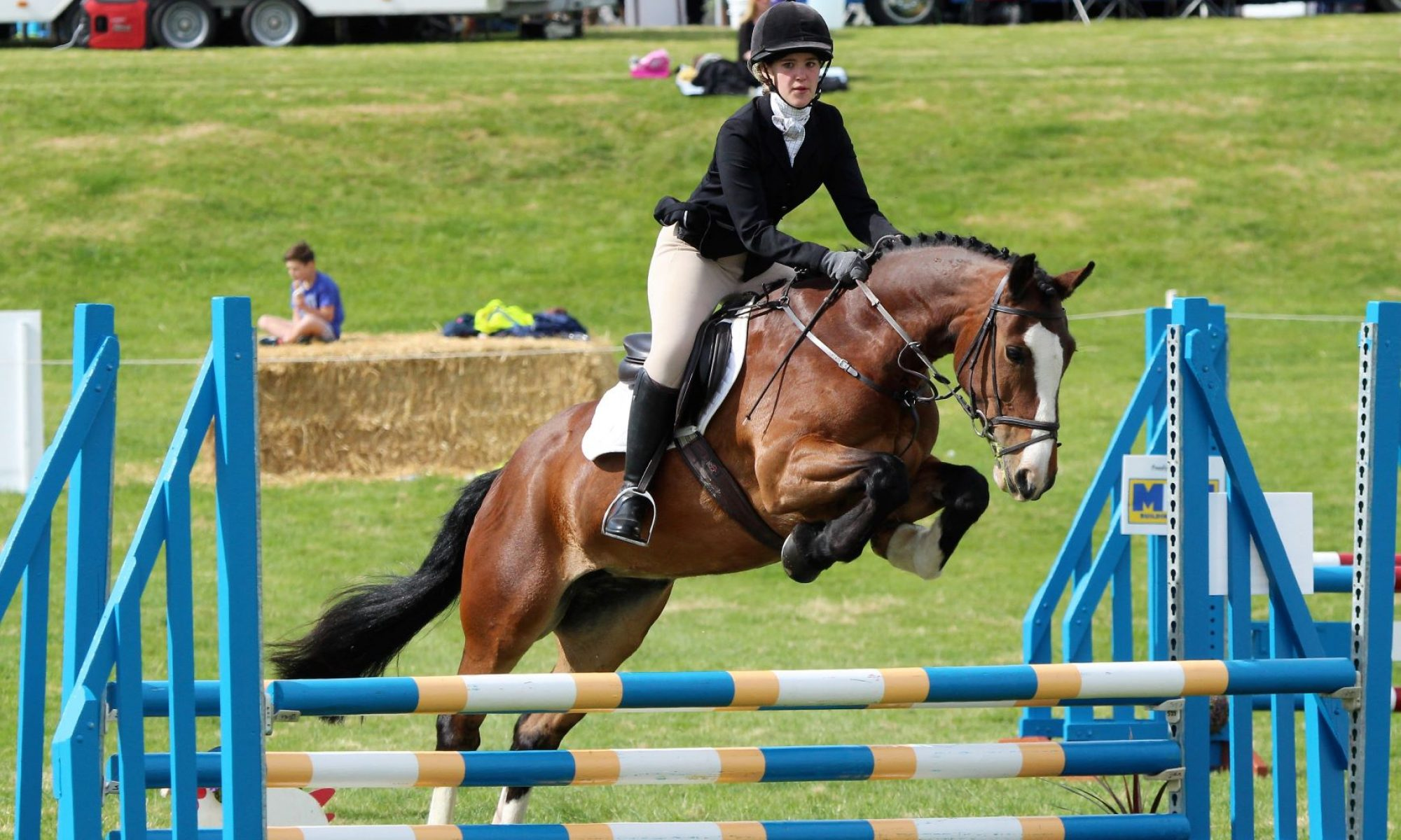 Emily Scott-Bromly's Journey to Becoming a Vet