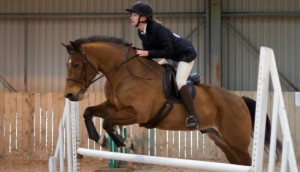 Our showjumping endeavours