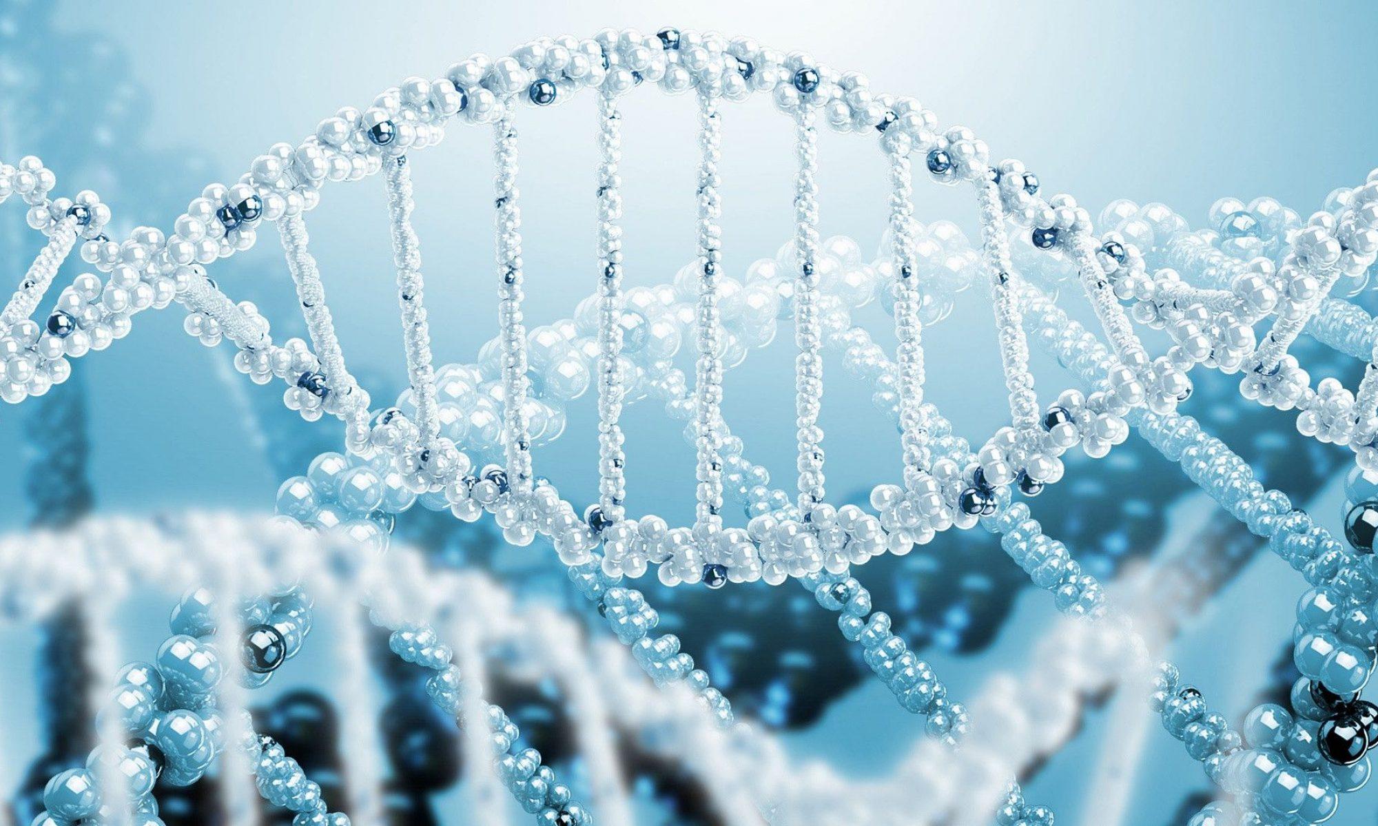 Team Zenith genome blogs
